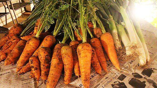 自然農法の無農薬野菜の即売会を自由が丘にある弊社のテラスで自然好きな人達に行ったら完売!!