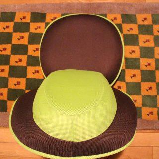 背筋がGUUUUNグ―~~ンと美的な姿勢を保つGREENな座椅子がアマゾンから届きました!
