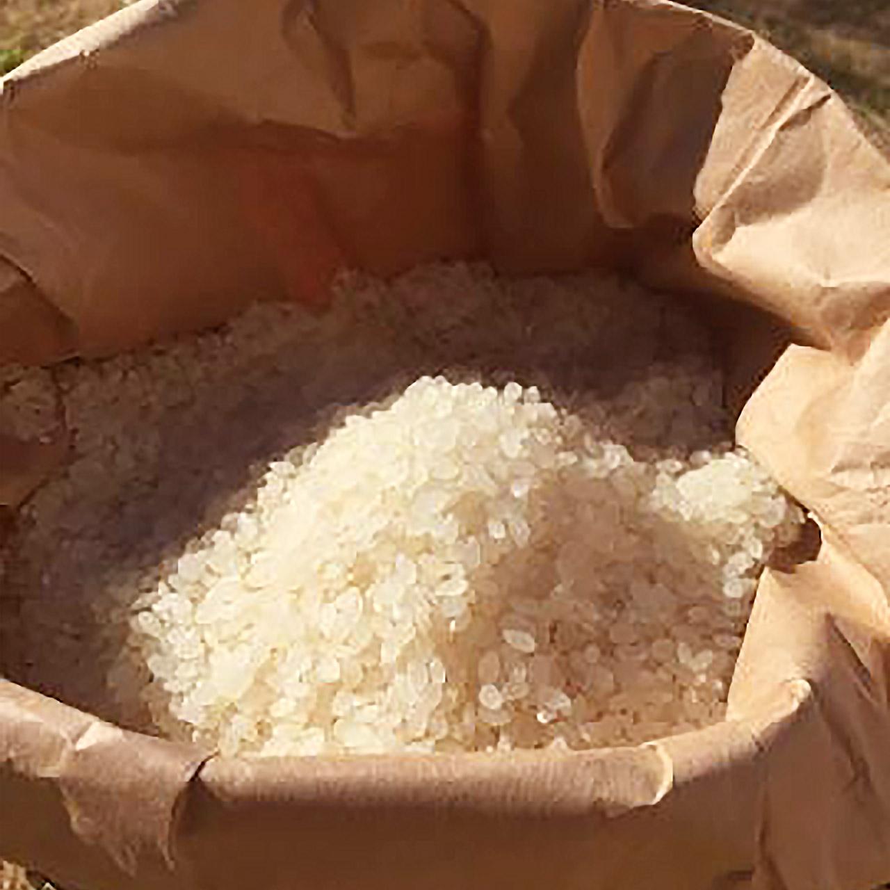 dad-arigatou-rice-03