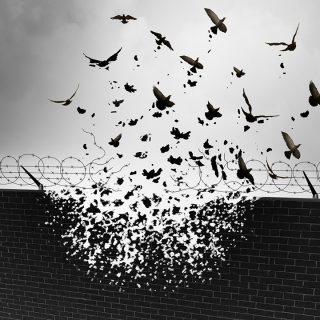 トランプ大統領は、本当に抗議の対象なのでしょうか?~米入国制限が世界で大混乱~