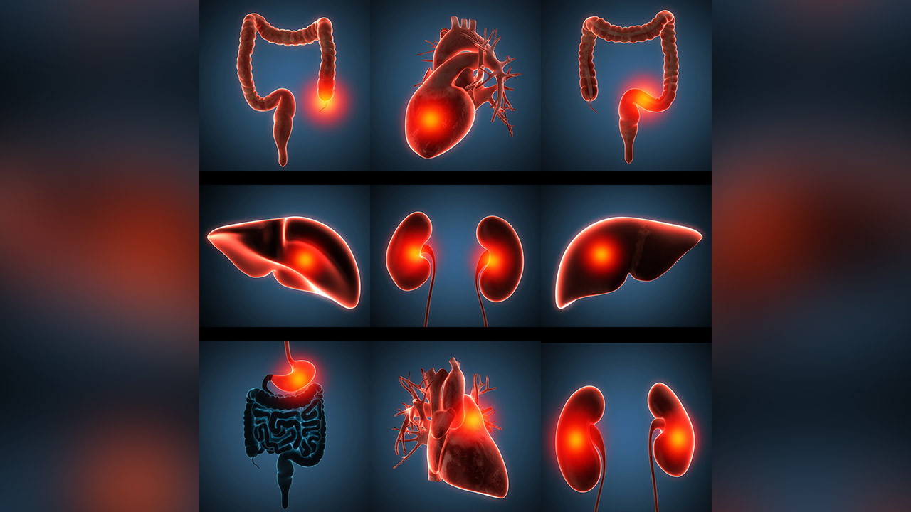 「体を痛めている人達があまりにも多い」と医者に聞くことが多いので早めに予防しよう!