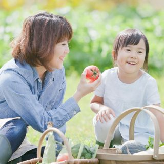 なぜか?農薬が配布された日本の食卓でオーガニックの選択の重要性とは?