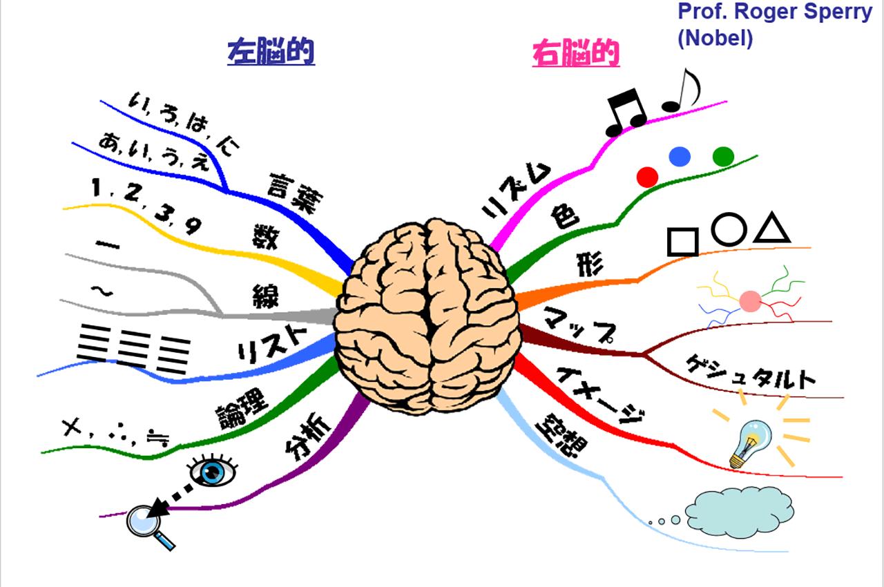 右脳と左脳の働かせ方のコツを得...