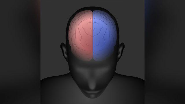 右脳と左脳の働かせ方のコツを得ると人生に大事な恩恵を運んでくれる。