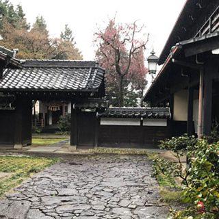 岐阜県・多治見の蔵珍窯で22年ぶりに創作開始~!
