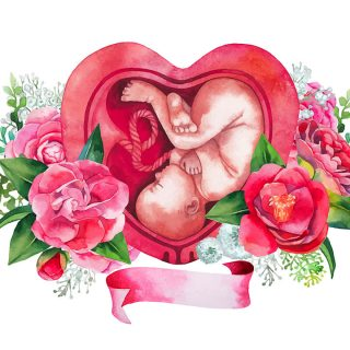 母親の腹の中にいた事実は変えられない。究極の学び・母親との関係性をひも解く。