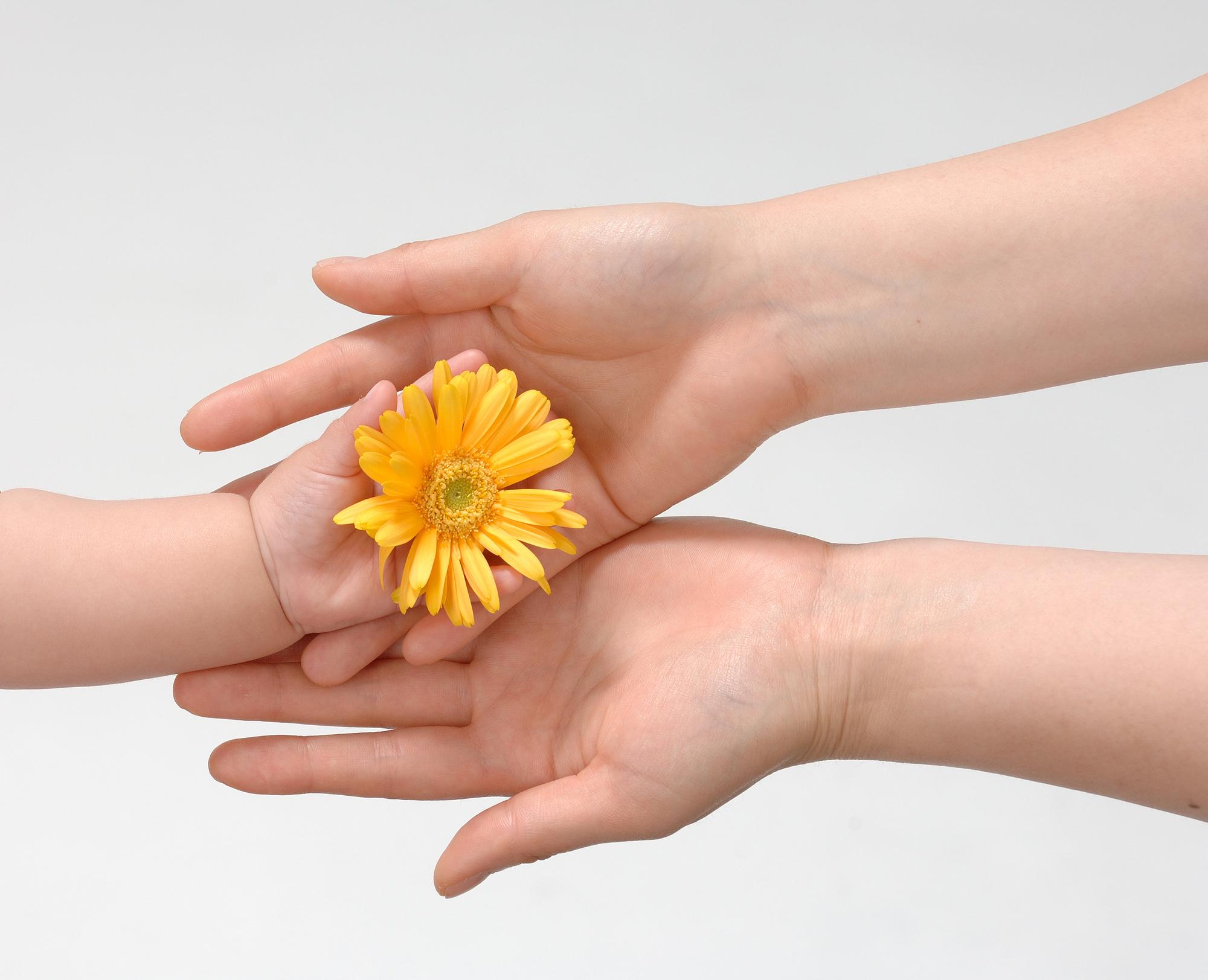 「貴乃花」に見る人間関係の基礎の基礎~ヒューマンスピリット~