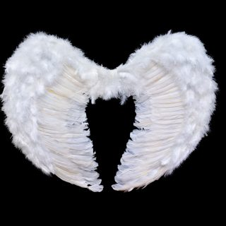 天使か悪魔の戦いとは人間の光か闇なのか?地球外生命体の光か闇なのか?
