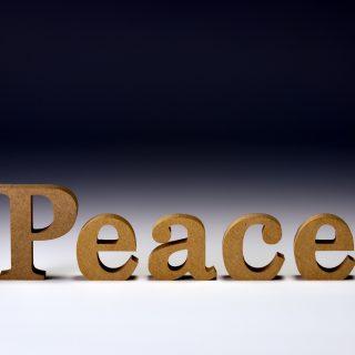 真の平和は「悟り」の道から起きる。人類の意識の選択が世界の現実であるから。