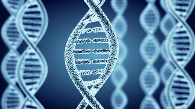 YAP遺伝子もつ高度な生命体・日本人の本領を発揮する時代!