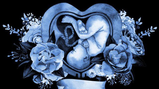 古代アトランティス文明時代を起源に、母親の子宮に来た!?