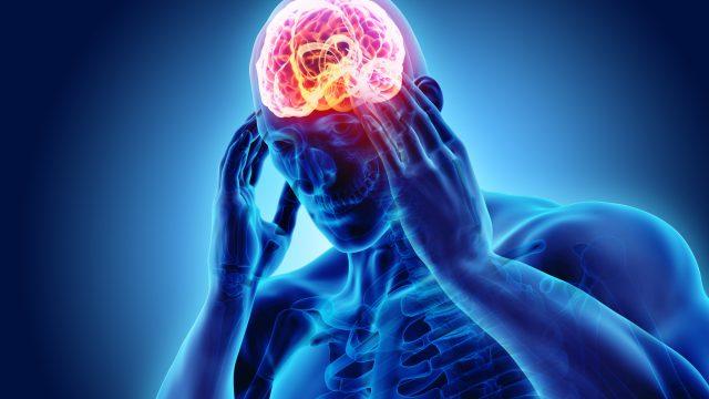 両目から脳にインプット作業が行われる。何を見るのか?が大事。