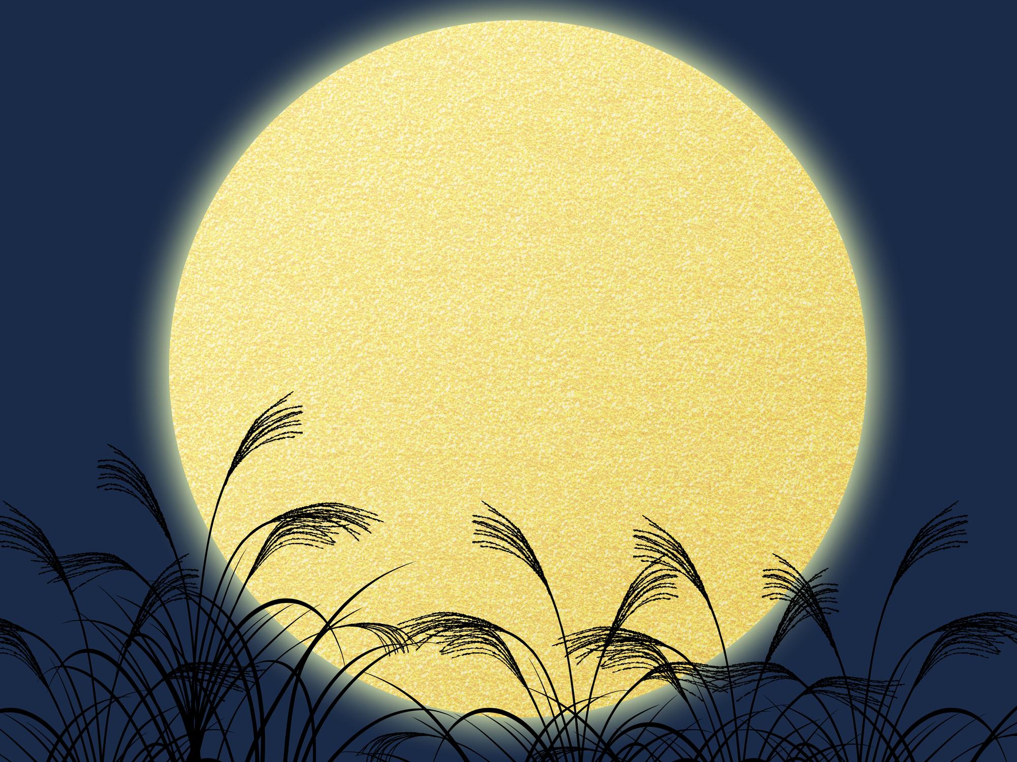 満月の自分の願いは儚くも散り、自分を見つめる月光は輝くだろう。
